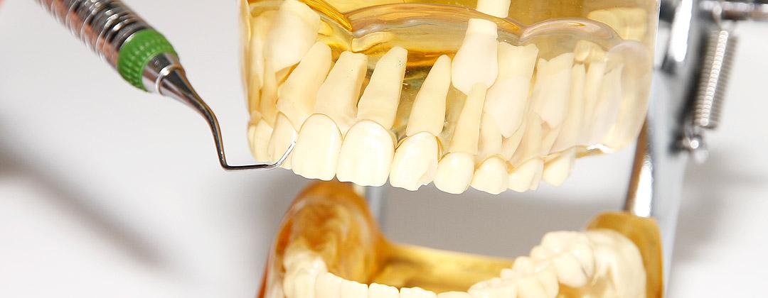 Kontakt Zahnarztpraxis
